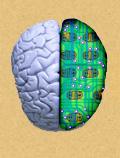 Роль и типы памяти