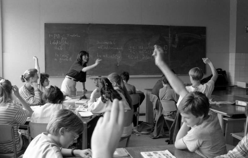 Основные отрасли педагогики