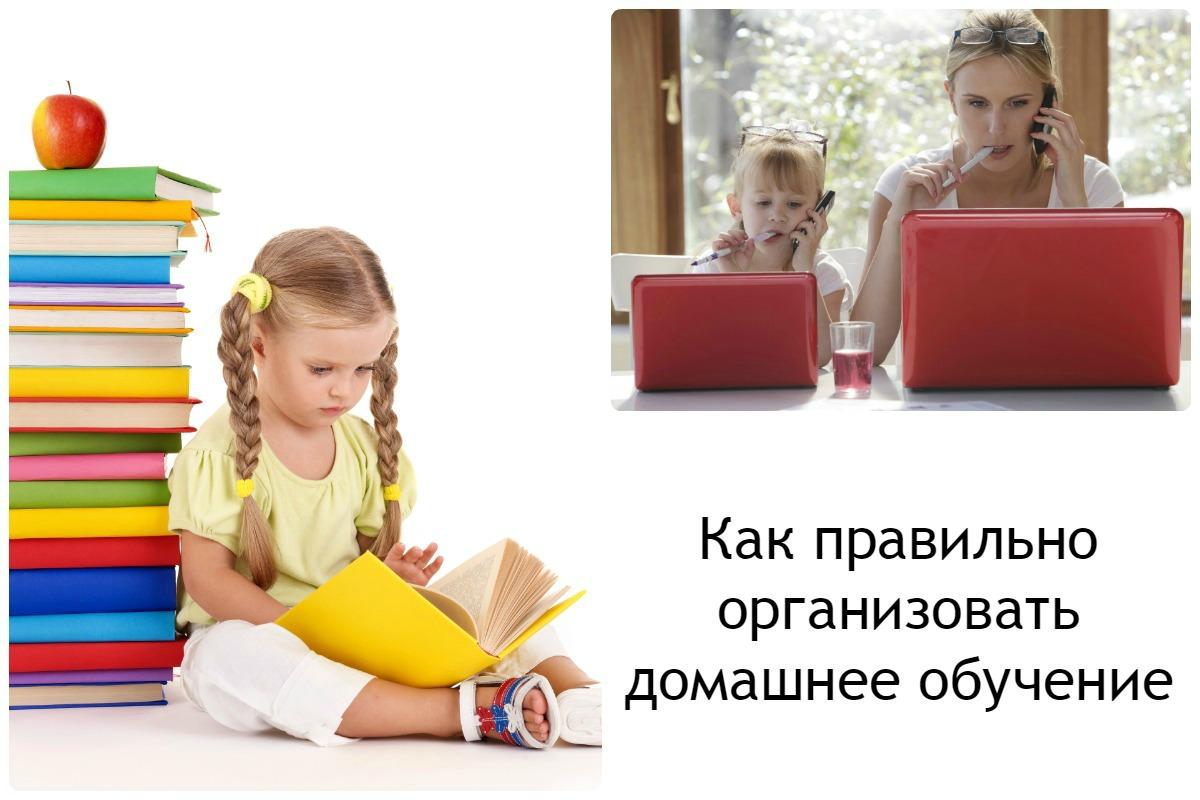 Как правильно организовать домашнее обучение