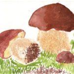 2. «Боровики в лесу»
