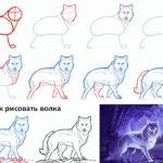 Схема поэтапного рисования волка