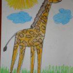 Жираф на солнышке