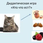 Игра «Кто что ест?»