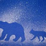 Изображение медведя и лисы