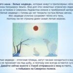 «Животные Севера»