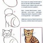 Схема для кошки