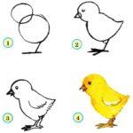 Схема рисования цыплёнка