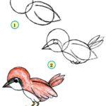 Схема рисования воробышка