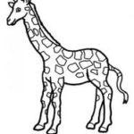 шаблон жирафа