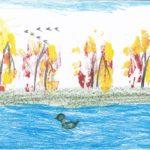 Рисунок карандашом «Серая Шейка на озере»