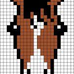 Пони анфас Портрет лошадки