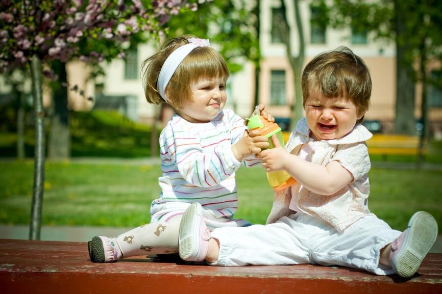 Дети отбирают игрушку друг у друга